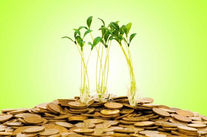 باور ثروت را در وجود خود بررسی کنید