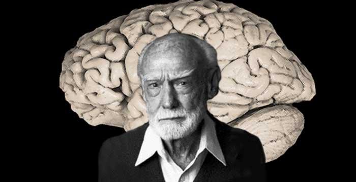 حقیقت عملکرد مغز چیست؟ - راجر ولکات اسپری