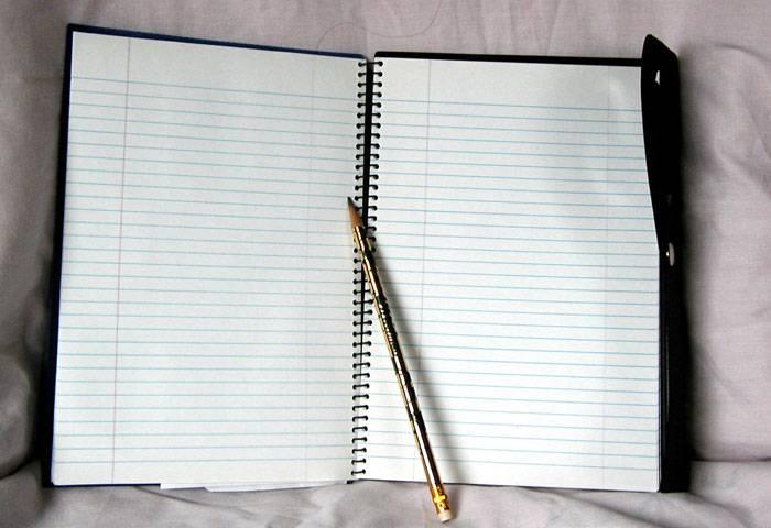 یک دفتر روزانه برای استعاره تهیه کنید