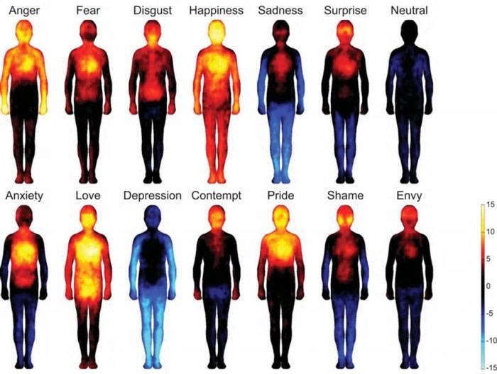 احساسات به طور مستقیم روی جسم ما تاثیر میگذارند