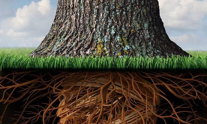 ریشه احساسات ما کجاست؟ در درون ما یا بیرون از ما؟