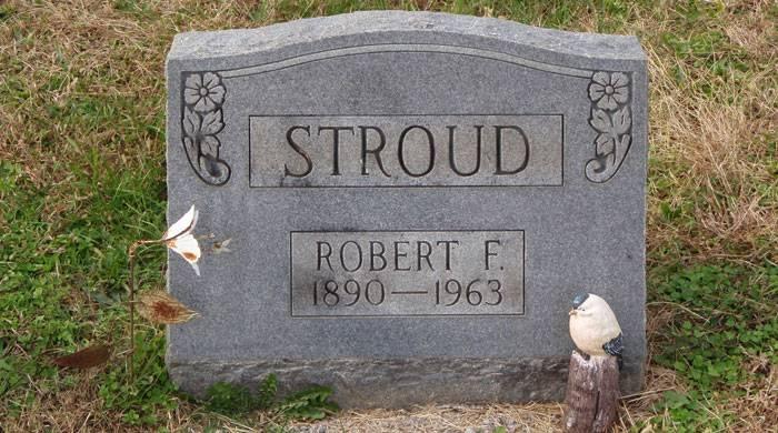 زندگی رابرت استراد چه نکاتی داره که باید الگوی ما بشه؟