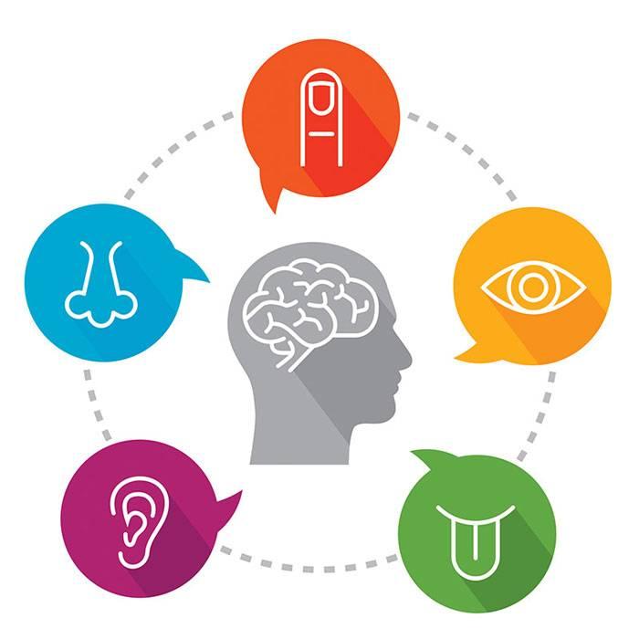 Sensory awareness- the fourth pillar of the 4 pillars of NLP