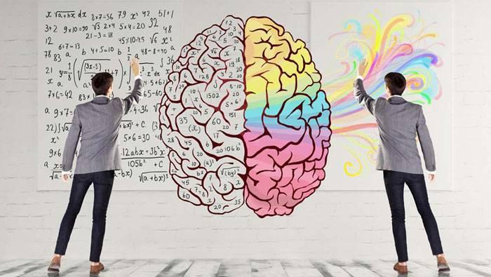 چطور نیمکره فعالتر مغز خود را شناسایی کنیم؟