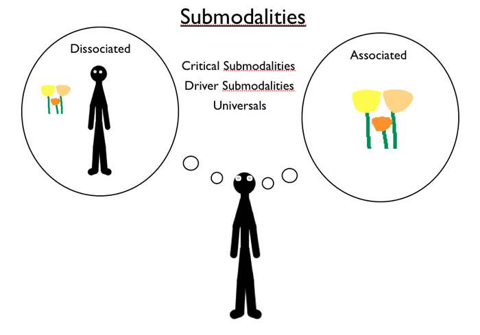What is the importance and functions of submodality?