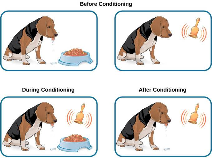 How does conditioning work?