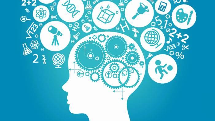 مهارت یادگیری سریع توسط ان ال پی