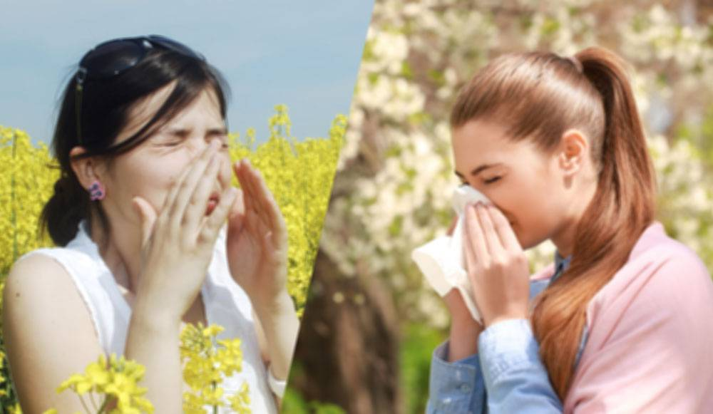 حساسیتها و درمان